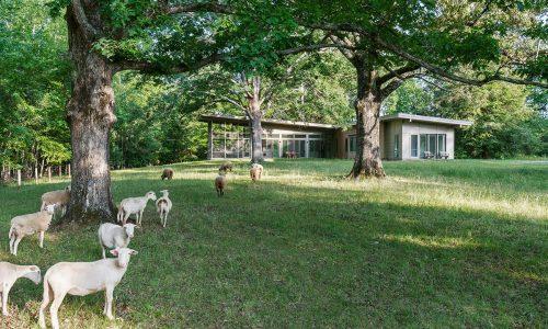 Hammock-House-Sheep-Farm-Exterior-1200x720